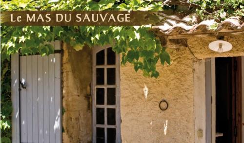 sauvage mur